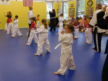 Tiger Martial Arts LLC karate lesson class instructor students